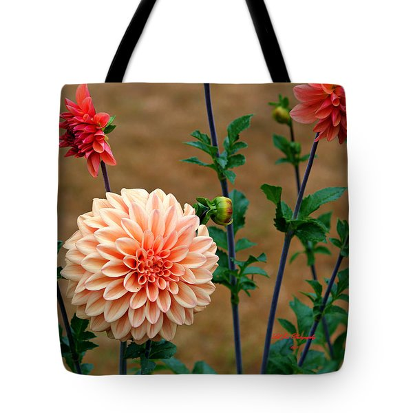 Bodaciously Orange Tote Bag by Jeanette C Landstrom