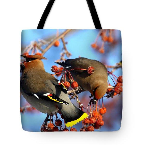 Bohemian Waxwings Tote Bag
