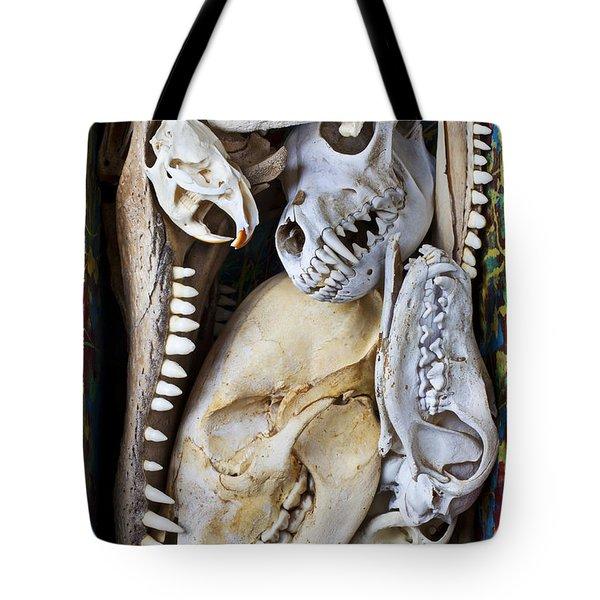 Bone Box Tote Bag
