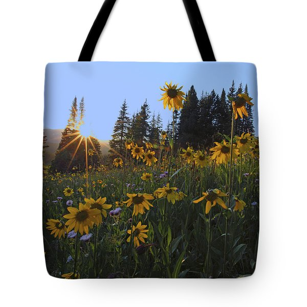 Boreas Pass Tote Bag