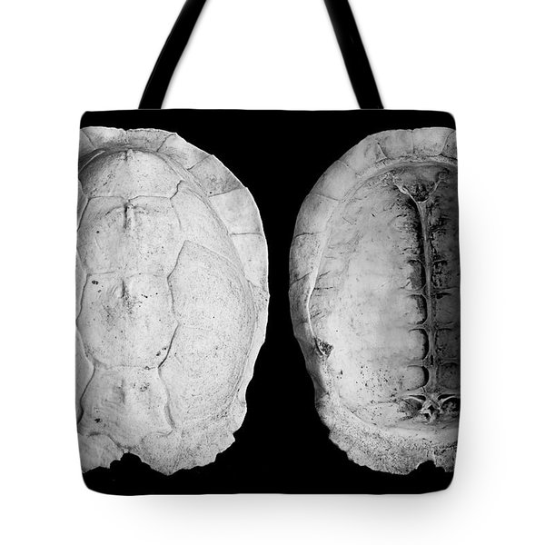 Box Turtle Shell Tote Bag by Frederic A Reinecke