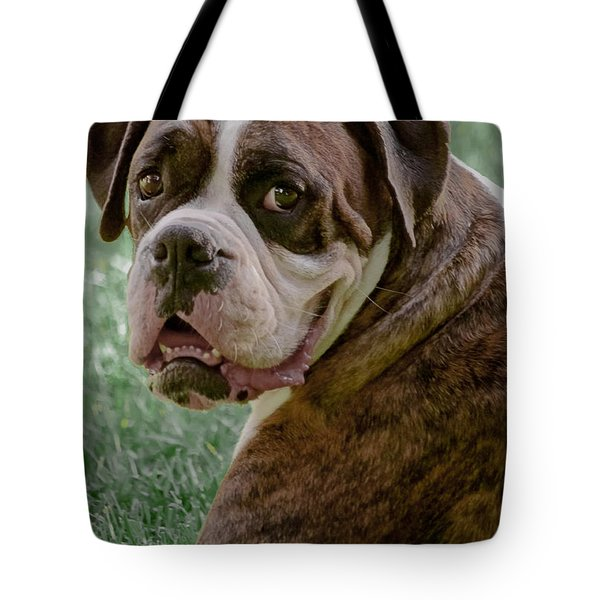 Boxer Smiles Tote Bag by DigiArt Diaries by Vicky B Fuller