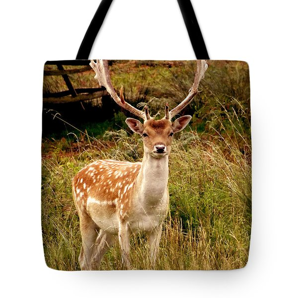 Wildlife Fallow Deer Stag Tote Bag by Linsey Williams