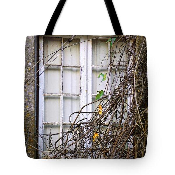 Branchy Window Tote Bag by Carlos Caetano