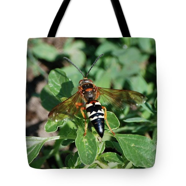 Tote Bag featuring the photograph Break Time by Thomas Woolworth