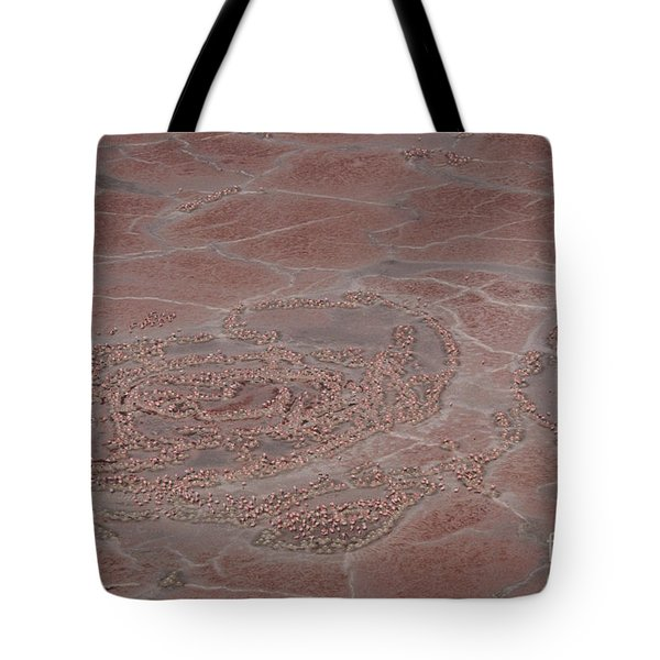 Breeding Colonies Of Flamingos Tote Bag by Gregory G. Dimijian