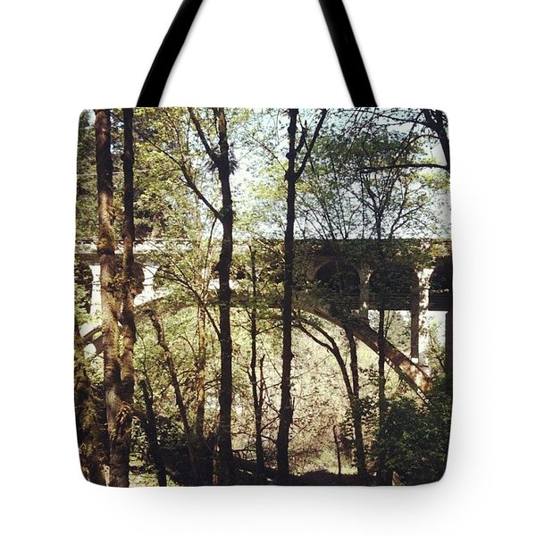 Bridge Over Lake Oswego Creek Tote Bag by Anna Porter