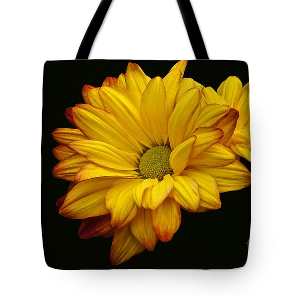 Bright And Brassy Tote Bag