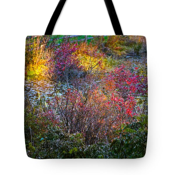 Bright Autumn Light Tote Bag