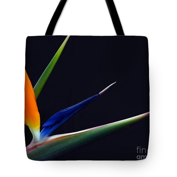 Bright Bird Of Paradise Rectangle Frame Tote Bag