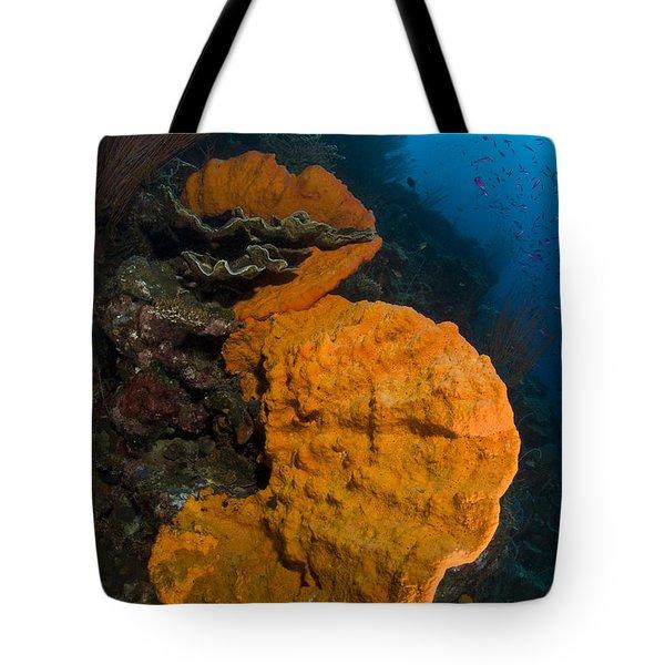 Bright Orange Sponge With Sunburst Tote Bag by Steve Jones