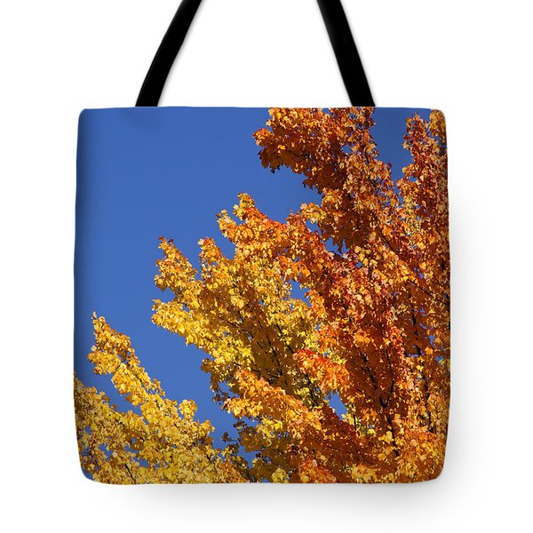 Brilliant Fall Color And Deep Blue Sky Tote Bag by Mick Anderson