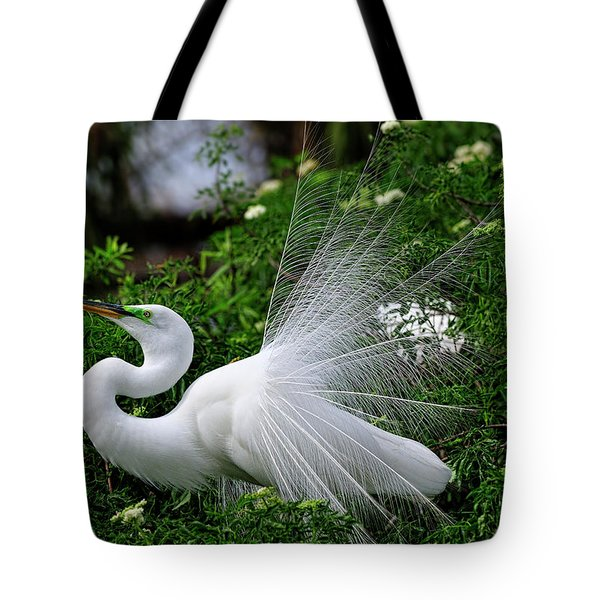 Brilliant Feathers Tote Bag