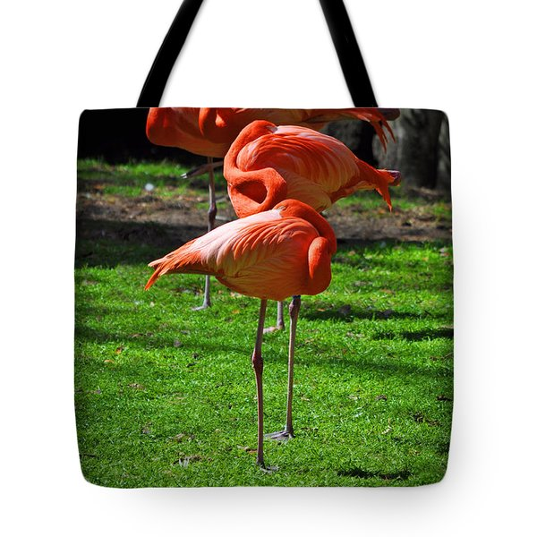 Brilliant Flamingos Tote Bag by Mary Machare