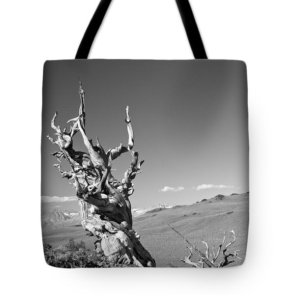 Bristlecone Pine And Cloud Tote Bag