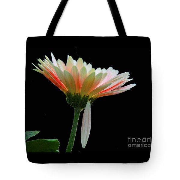 Broken Daisy Tote Bag by Cindy Manero