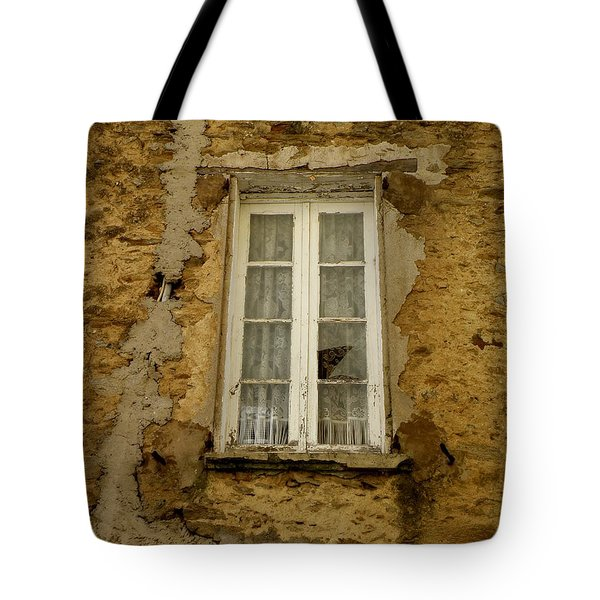 Broken Window Tote Bag by Lainie Wrightson
