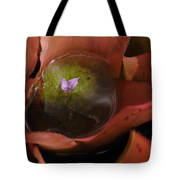 Bromeliad - The Garden Has Secrets Tote Bag