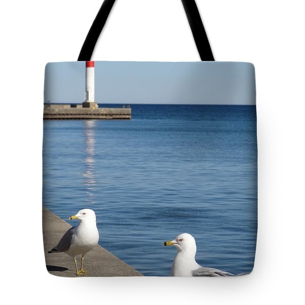 Tote Bag featuring the photograph Bronte Lighthouse Gulls by Laurel Best