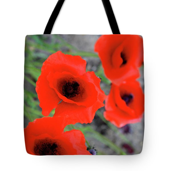 Brothers Of Red Tote Bag by Empty Wall