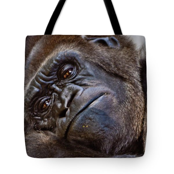 Brown Eyes Tote Bag
