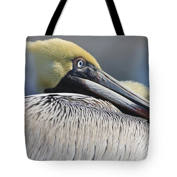 Brown Pelican Tote Bag by Adam Romanowicz