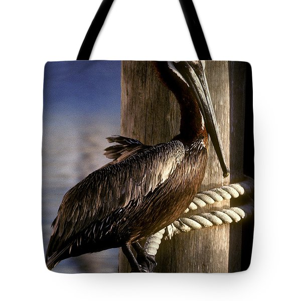Tote Bag featuring the photograph Brown Pelican In Key West 9l by Gerry Gantt