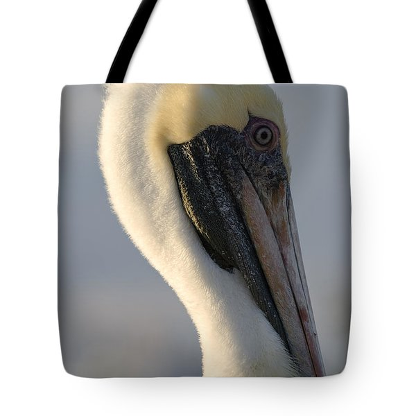 Tote Bag featuring the photograph Brown Pelican Profile by Ed Gleichman