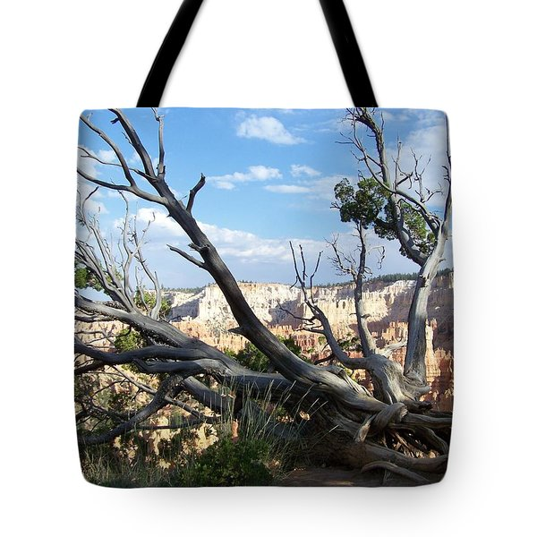 Tote Bag featuring the photograph Bryce Canyon by Dany Lison