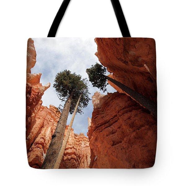 Bryce Canyon Towering Hoodoos Tote Bag by Karen Lee Ensley