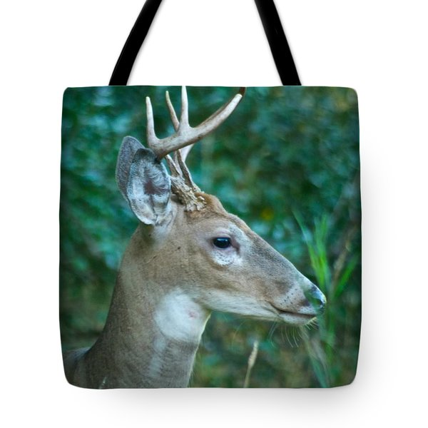 Buck Profile 9634 Tote Bag by Michael Peychich