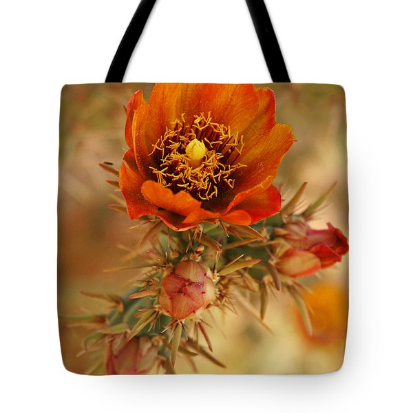 Buckhorn Cholla 2 Tote Bag