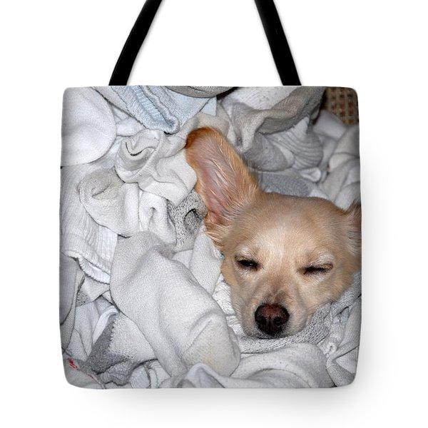 Buddy Socks Tote Bag