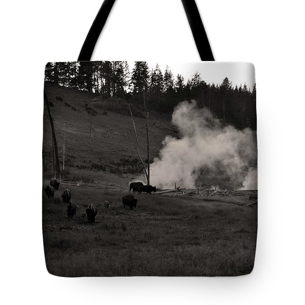 Buffalo Apocalypse  Tote Bag