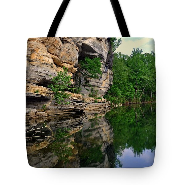 Buffalo Bluff Reflections Tote Bag by Marty Koch