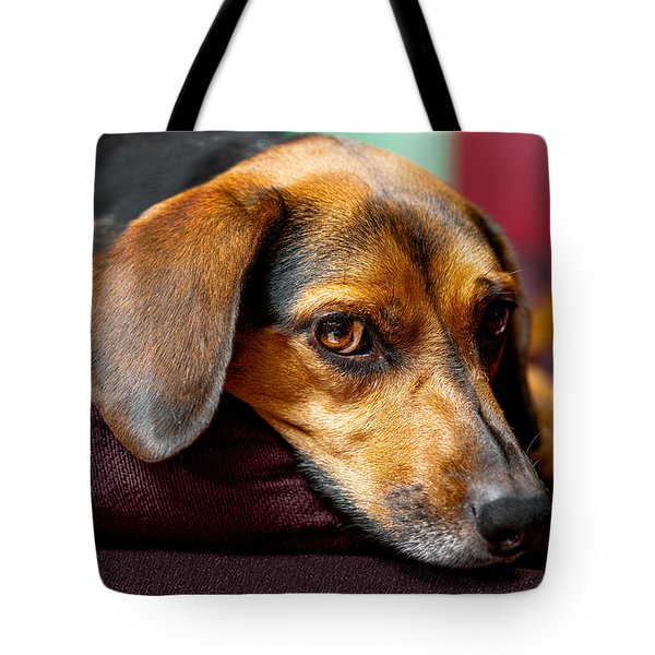 Buffy Tote Bag by Christopher Holmes