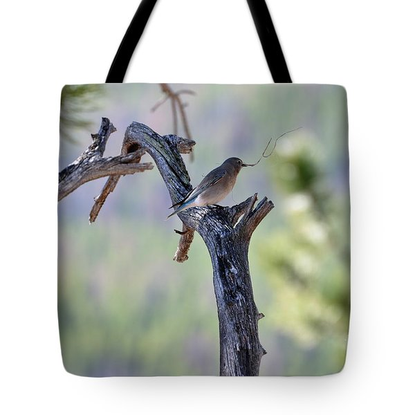 Building Her Nest Tote Bag