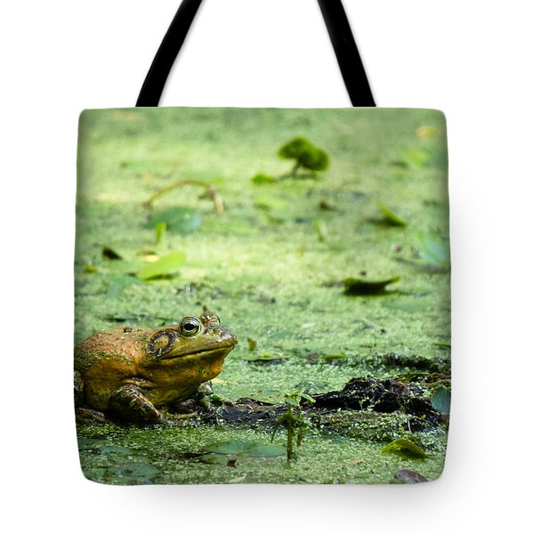 Bull Frog Tote Bag