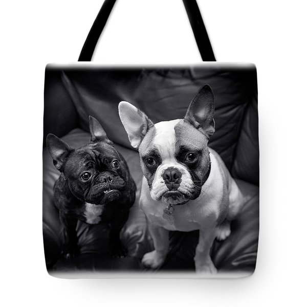 Bulldog Buddies Tote Bag