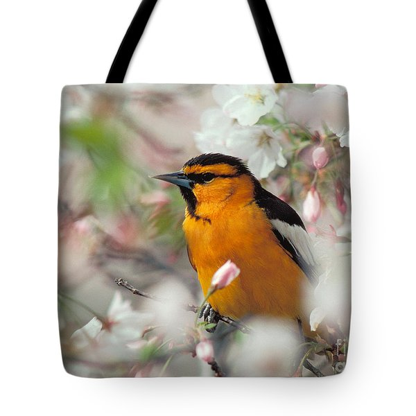 Bullock's Oriole Tote Bag by Doug Herr