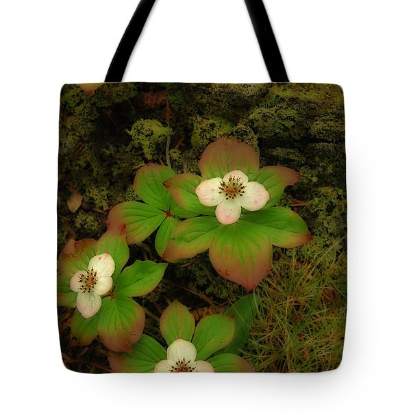 Tote Bag featuring the photograph Bunch Berries by Alana Ranney