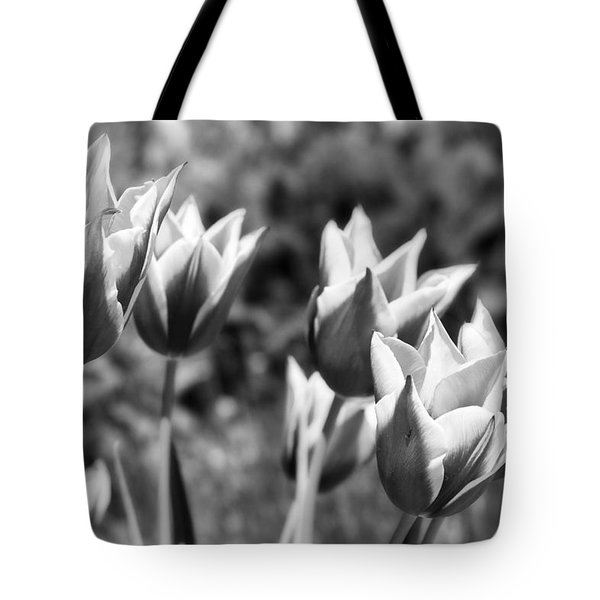Burgundy Yellow Tulips In Black And White Tote Bag by James BO  Insogna