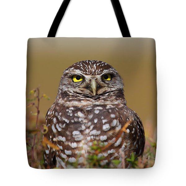 Burrowing Owl II Tote Bag by Bruce J Robinson