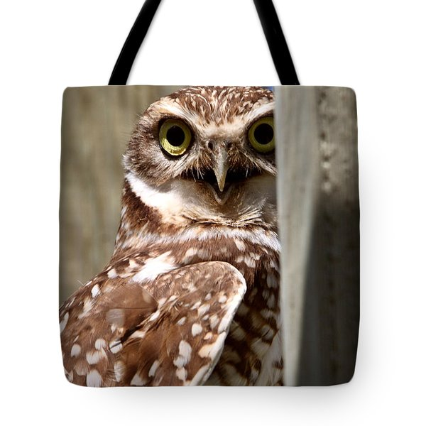 Burrowing Owl On Enclosed Window Seal Tote Bag by Mark Duffy