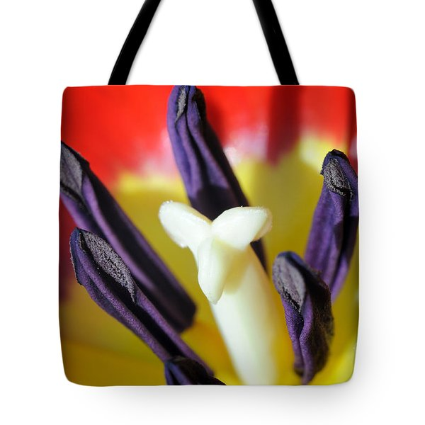 Burst Tote Bag by Luke Moore
