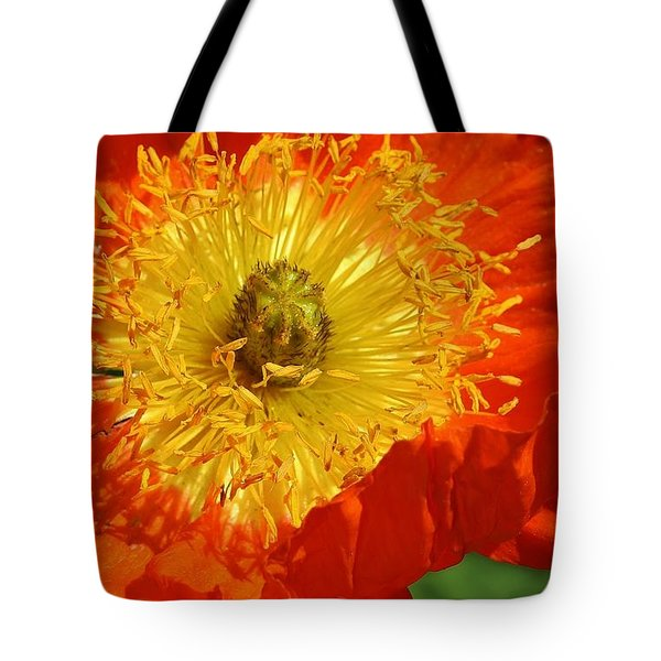 Bursting Peony Tote Bag