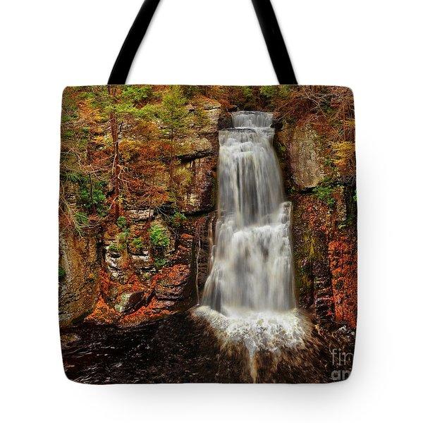 Bushkill Main Falls Tote Bag by Nick Zelinsky