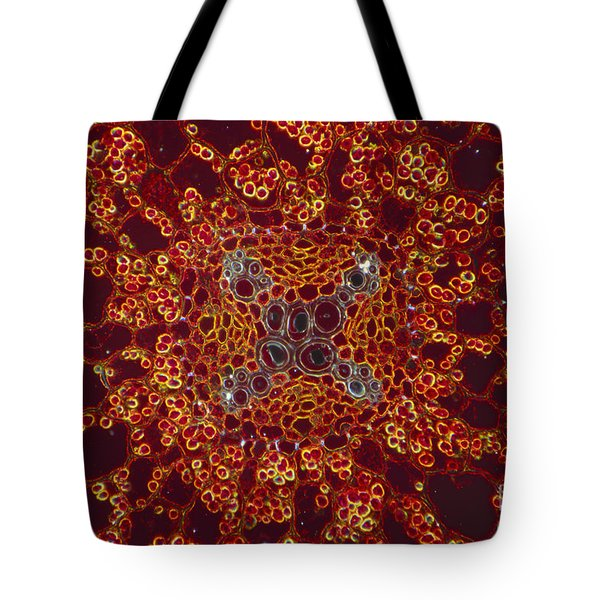 Buttercup Vascular System Tote Bag by M I Walker