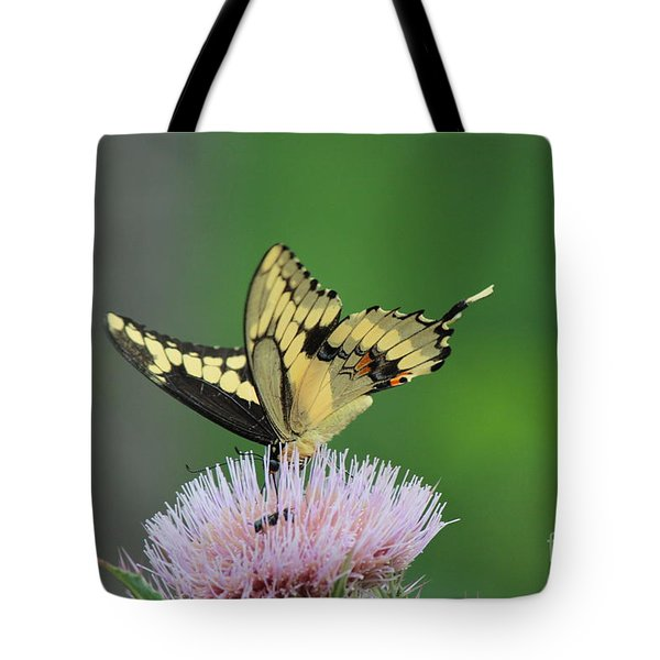 Tote Bag featuring the photograph Butterflies Are Free by Kathy  White