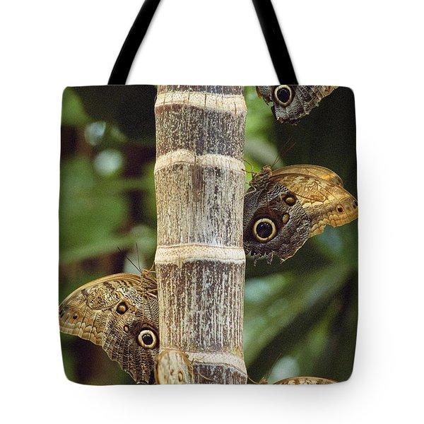 Butterflies Tote Bag by Bilderbuch